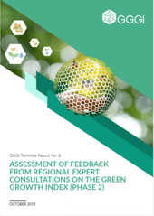Assessment of Feedback from Regional Expert Consultations on The Green Growth Index (Phase 2)